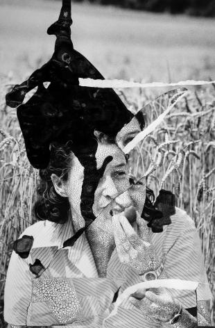Veronica - Wheat, 2019