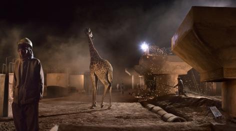 nick brandt, bridge construction with giraffe & worker