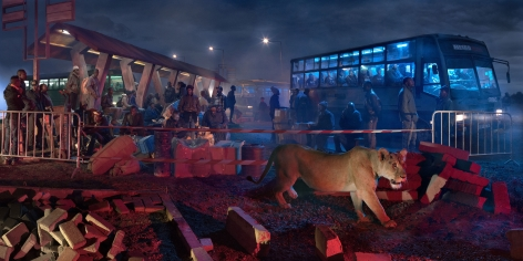 nick brandt, bus station with lioness
