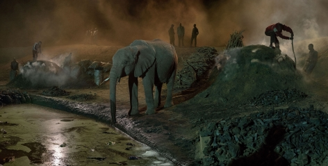 Nick Brandt, Charcoal Burning With Elephant