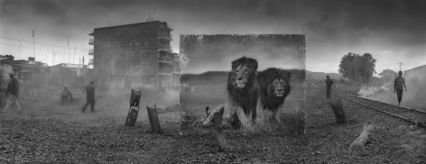 Railway Line with Lion Brothers, 2015