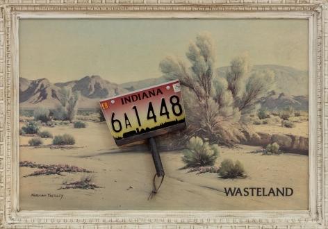Wasteland, 2013, Mixed media