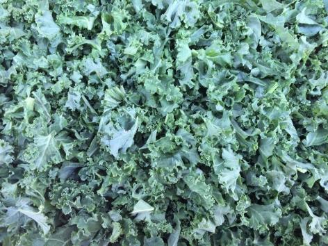 Kale Cut