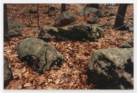 Ana Mendieta  Untitled: Silueta Series, Iowa, 1976-78 / 1991  From Silueta Works in Iowa, 1976-1978   Color photograph  16 x 20 inches (40.6 x 50.8 cm)  Edition 10 of 20 with 4 APs