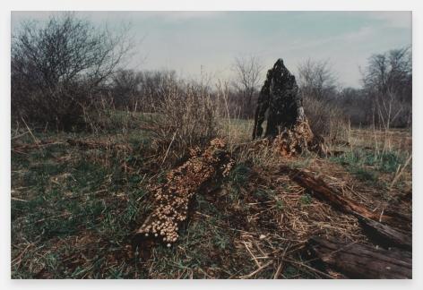 Ana Mendieta  Untitled: Silueta Series, Iowa, 1976-78 / 1991  From Silueta Works in Iowa, 1976-1978  Color photograph  16 x 20 inches (40.6 x 50.8 cm)  Edition of 20 with 4 APs