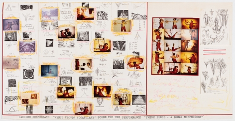 Carolee Schneemann Venus Vector Vocabulary: Score for the Performance 'Fresh Blood - A Dream Morphology', c. 1981-83 various prints, mixed media collage 35 1/4 x 69 1/4 inches 89.5 x 175.9 cm