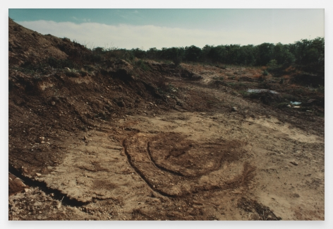 Ana Mendieta  Untitled: Silueta Series, Iowa, 1976-78 / 1991  From Silueta Works in Iowa, 1976-1978  Color photograph  16 x 20 inches (40.6 x 50.8 cm)  Edition of 20 with 4 APs