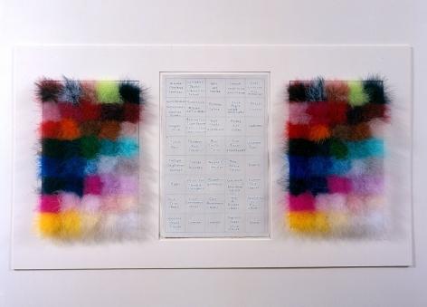 Jane Hammond Extravagant Reflex, 2003 - 2004 Feather boas, rag paper and ink 24.25 x 44 inches (61.6 x 111.8 cm) 25.5 x 45 inches (64.8 x 114.3 cm) (framed) GL6494
