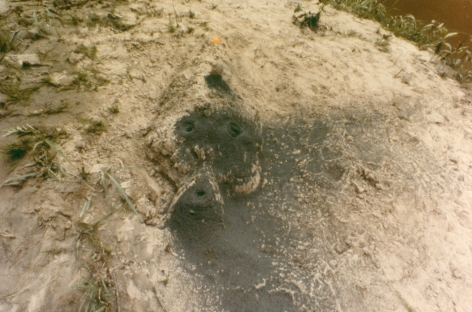 Ana Mendieta Volcano, Silueta Series, 1978 Color photograph 8 x 10 inches (20.3 x 25.4 cm)