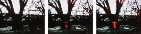 Ana Mendieta  Energy Charge, 1975  16mm film transferred to high-definition digital media, color, silent  Running time: 49 seconds  Edition of 8 with 3 APs