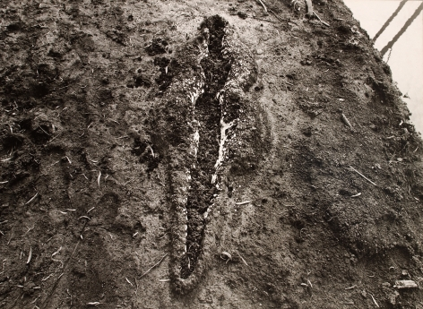 Ana Mendieta Black Venus, 1980 Black and white photograph 40 x 55 inches (101.6 x 139.7 cm) Edition 1 of 6