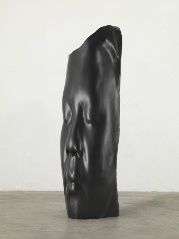 Jaume Plensa, Irma's Dream, 2015
