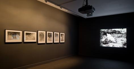 Ana Mendieta, NSU Art Museum