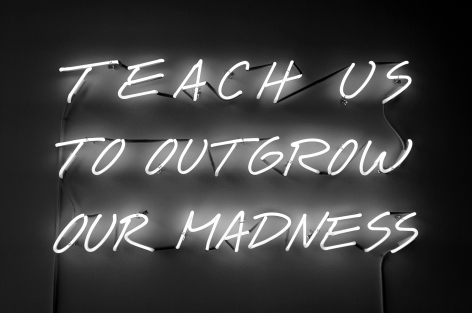 Alfredo Jaar, Teach Us To Outgrow Our Madness, 1995