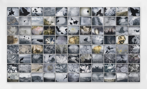 Michelle Stuart, Flight of Time,2016