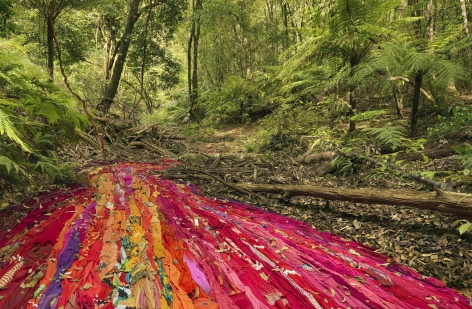 Rosemary Laing Drapery and wattle, 2017 Archival pigment print 23.6 x 36 inches (60 x 91.5 cm) 24.5 x 37 x 2.25 inches (62.2 x 94 x 5.7 cm) (framed) GP2255-A.3 Edition of 8