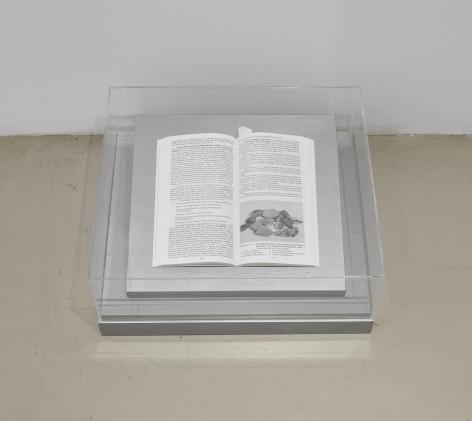 JOËLLE TUERLINCKX Vitrine-argent 'Geologie von Berlin und Brandenburg' - Seite 149
