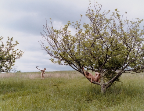 JUSTINE KURLAND Peach Tree 2002