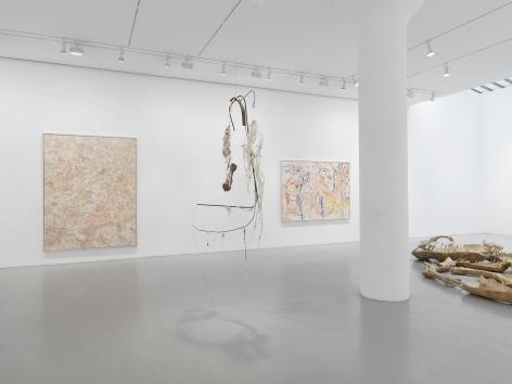 NANCY GRAVES Installation view at Mitchell-Innes & Nash, NY, 2015