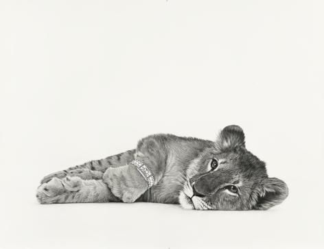 KARL HAENDEL  Lion Cub 3  2020