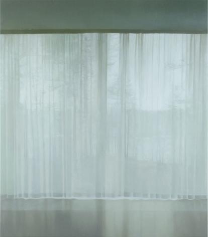 PAUL WINSTANLEY Veil 19