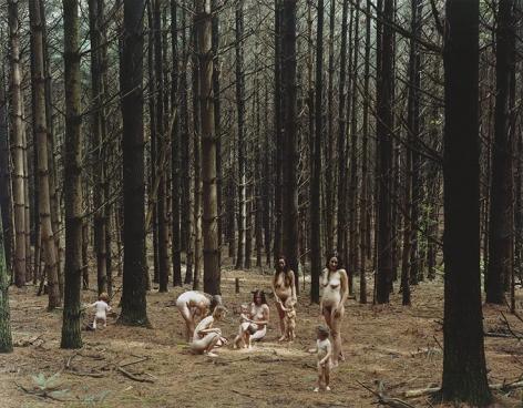 JUSTINE KURLAND Pine Forest