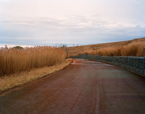 Photograph of a red, rust colored road leading into the distance with high, brown grass to the left and Gabion Walls on the right, Freshkills, NYC