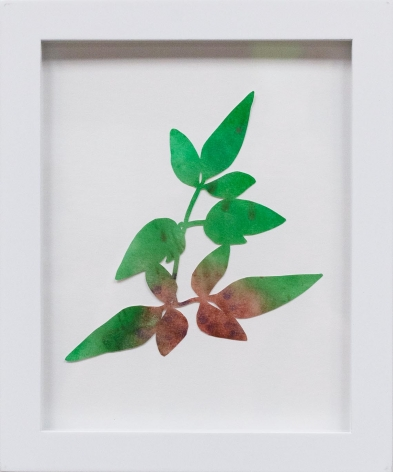 Hannah Cole  Dancing Weed, 2018  watercolor on cut paper  Framed: 10h x 8w in 25.40h x 20.32w cm  HC_061
