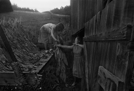 Rob Amberg, Angie and Juanita Shelton Unloading Tobacco, Hopewell, Madison County, NC, 1983, Archival Pigment Print, 13 1/2h x 20w in, Edition of 12