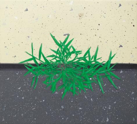 Hannah Cole  Crabgrass #2, 2017  Acrylic on canvas  18h x 20w in 45.72h x 50.80w cm  HC_015
