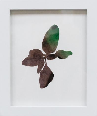 Hannah Cole  Little Purple Weed, 2018  watercolor on cut paper  Framed: 10h x 8w in 25.40h x 20.32w cm  HC_039