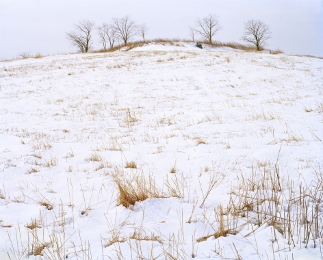 North Mound, Winter, Freshkills, NYC, 2019. Photograph of the North Mound in Winter, four bare trees at the top of the mound.