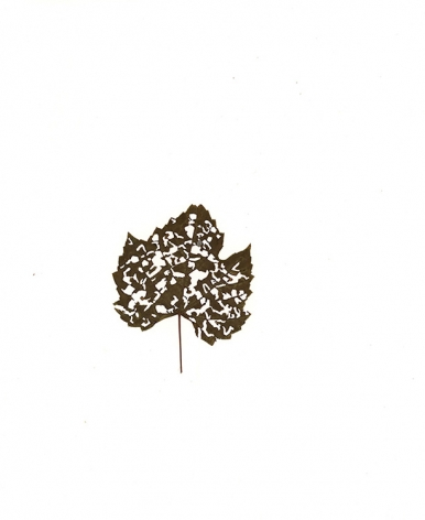Pressed Leaf, 2015, a pressed, dry leaf attached to paper and framed