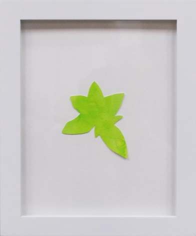 Hannah Cole  Little Yellow Star Weed, 2018  watercolor on cut paper  Framed: 10h x 8w in 25.40h x 20.32w cm  HC_054