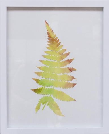 Hannah Cole  Yellow Fern, 2018  watercolor on cut paper  Framed: 20h x 16w in 50.80h x 40.64w cm  HC_057