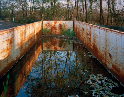 Photograph of the interior of a white, rusted construction dumpster filled with water which is reflecting the landscape behind it. Trees, water and foliage. Freshkills, NYC
