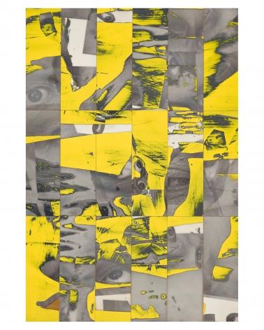Randy Shull  Sunflower Eyes, 2019  inkjet, acrylic on panel  40h x 28w in