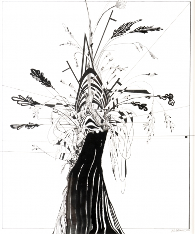 Luke Whitlatch  Yard Life #2, 2020  Ink on paper  Framed: 25h x 29 1/2w in 63.50h x 74.93w cm  LW014 black ink on white paper abstract imagery with some outline plant matter