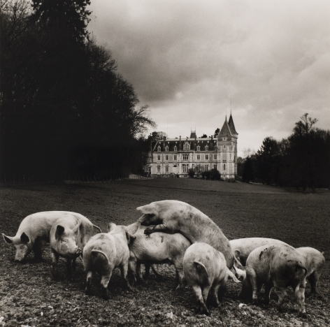 Philippe Salaün (1943-)  Le vie de Chateau, 1973  Gelatin silver print  16 x 12 inches (paper) 10 x 10 inches (image)  PS_005, Black and White Photography