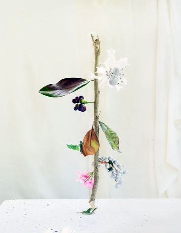 Botanicals, White Flower, 2020  Archival Pigment Print  50.8h x 40.64w cm  Edition of 5  30h x 24w in  76.2 h x 50.8w cm  Edition of 3, Still life of a stick balanced on its end with purple and green leaves (ral and fake), pink silk flowers, purple grapes and white ornaments
