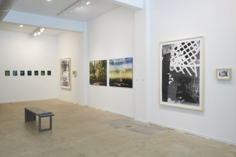 Installation view of gallery exhibition