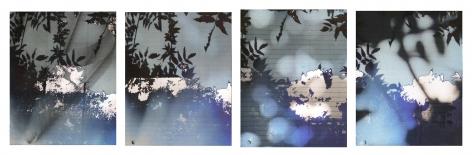 Bryan Graf  Garden Notes, 2018  Archival Pigment Inkjet Print  15 1/2h x 48w in