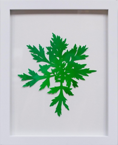 Hannah Cole  Carrot-Top Looking Weed, 2018  watercolor on cut paper  Framed: 14h x 11w in 35.56h x 27.94w cm  HC_060