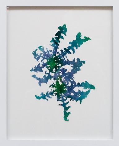 Hannah Cole  Double Dandelion, 2018  watercolor on cut paper  Framed: 20h x 16w in 50.80h x 40.64w cm  HC_042