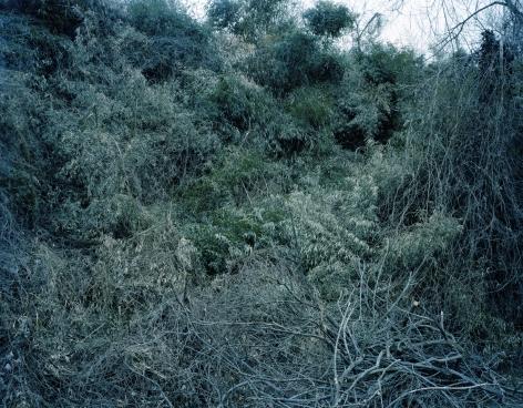 Pamela Pecchio, Hide The Sun, 2010, Archival Pigment Print, 28 1/2h x 36w in, Edition of 7, Photography