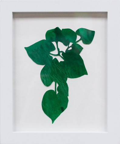Hannah Cole  Dark Green Heart Weed, 2018  watercolor on cut paper  Framed: 10h x 8w in 25.40h x 20.32w cm  HC_040
