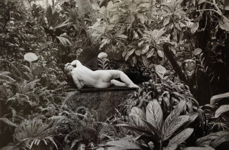 Edouard Boubat (1923-1999)  Jardin des Panets, Paris Hommage au Douanier Rousseau, 1980  Gelatin silver print  12 x 16 inches (paper) 9.5 x 14 inches (image)  EB_004, Black and White Photography