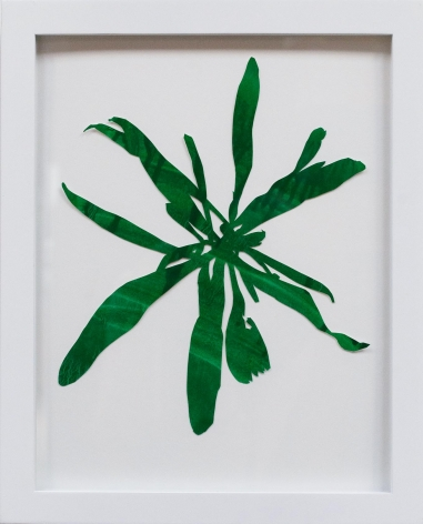 Hannah Cole  Untitled Green Weed #1, 2018  watercolor on cut paper  Framed: 14h x 11w in 35.56h x 27.94w cm  HC_037