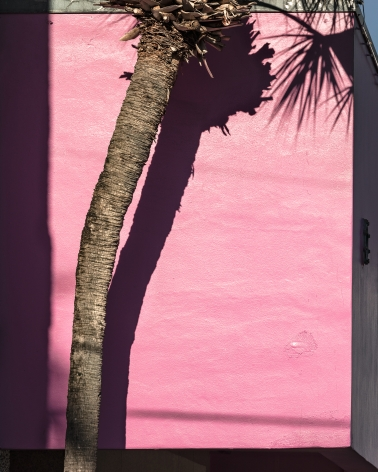 Miami Pink, 2017, from the series FloodZone Arcival pigment print  32 x 40 inches, Edition of 5  40 x 50 inches, Edition of 5, Bright pink, stucco wall edged in shadow with a palm tree