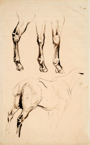 Eugene Delacroix, Three Studies of Legs and a Study of the Rump of a Horse, 1828  Pen and brown ink with brown wash on paper 12 1/4 x 7 5/8 inches